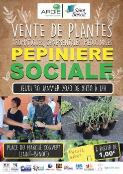 Vente de plantes de la pépinière sociale