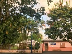 Fermeture de l'école maternelle Les Hibiscus suite à une vague de démangeaisons