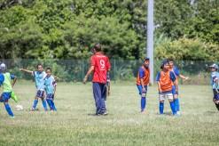 Covid-19 : L'école municipale des sports suspend ses activités