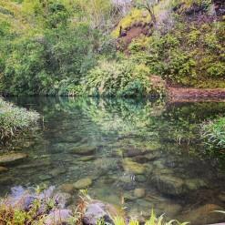 Mauvaise qualité de l'eau : Baignade interdite au Bassin Mangue
